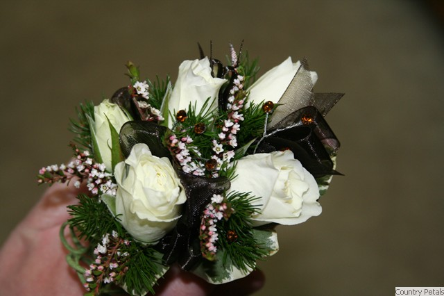 Tonawanda Aquatic Center. Corsage White Rose